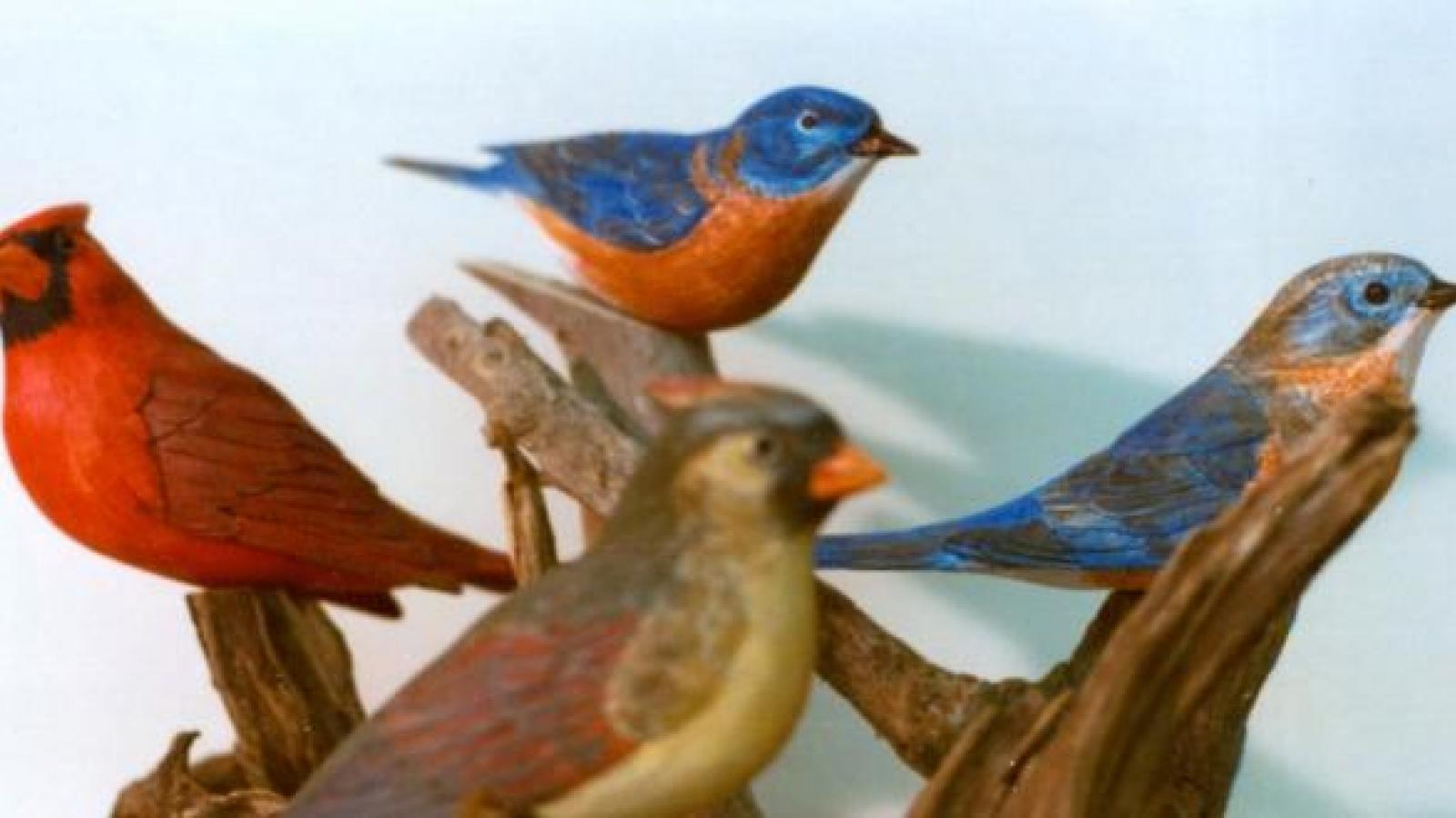 Wood carving by Ora Anderson: male and female bluebirds and cardinals. Athens, Ohio, 1977