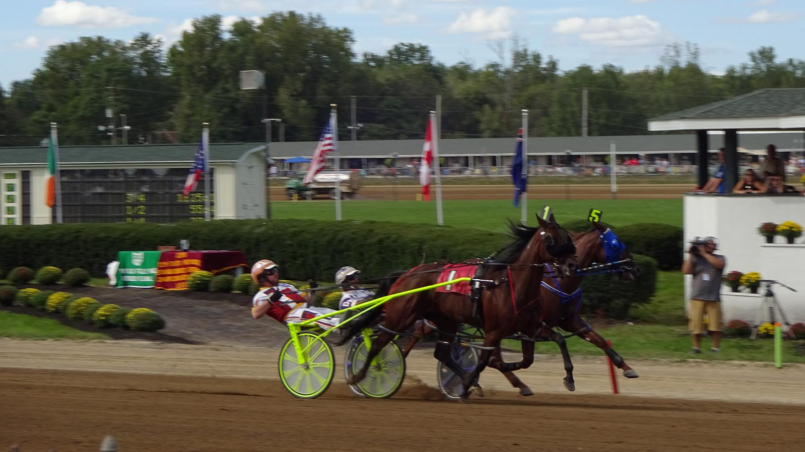 The Jug is a Triple Crown harness race.