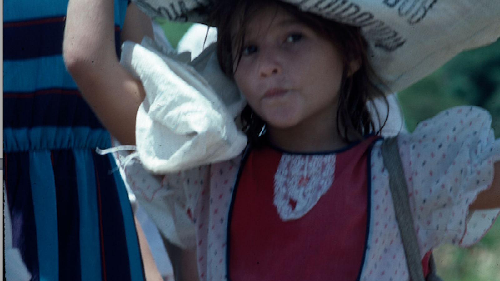 Photo of a Young Girl - Copapayo